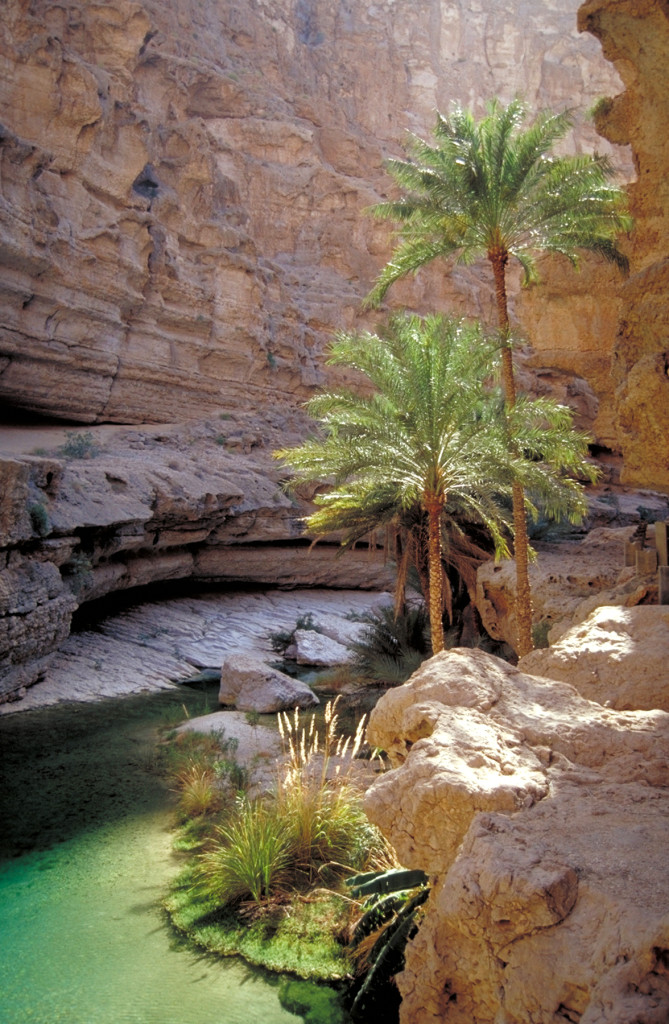 wadi bani khalid 142(1)