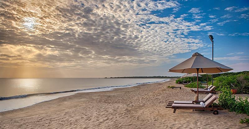 jungle beach resort rinco