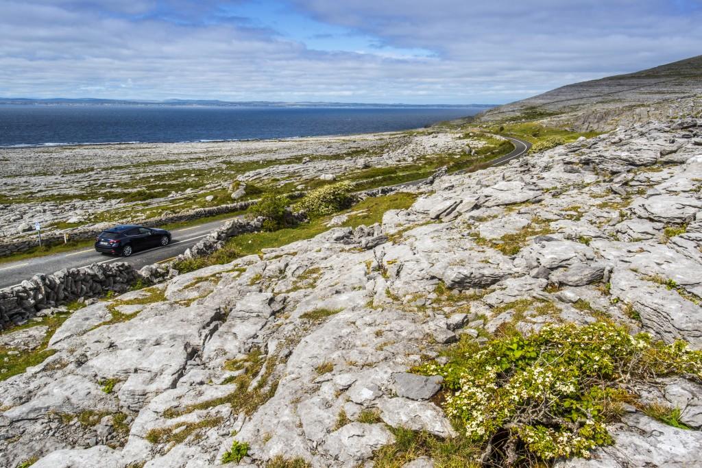 Black Head, The Burren, County Clare, Ireland, The wild Atlantic Way